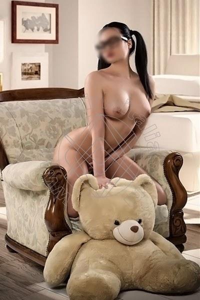 Daria New IMOLA 3510098043