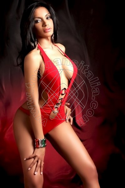 Aida Ambrosio GALLARATE 3808690402